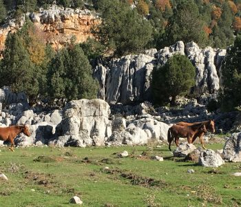 Ein Blick über die Gipfel des Taurusgebirges in Richtung Küste.