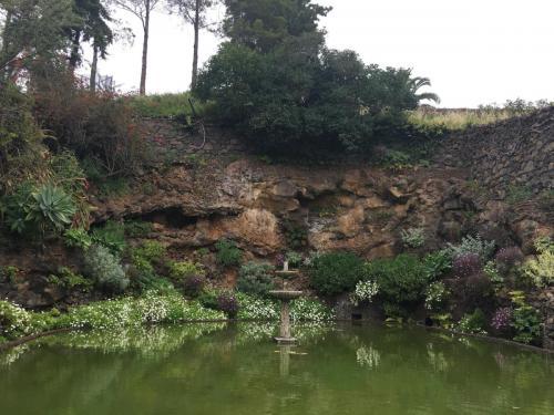 Madeira-Funchal-jardim-botanico-botanischer-garten-2