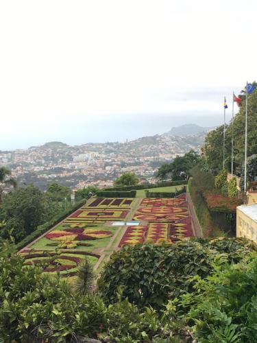 Madeira-Funchal-jardim-botanico-botanischer-garten-4