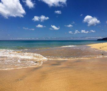 Ein heller Sandstrand und und ein klares, blaues Meer warten auf Porto Santo auf alle Interessierten.