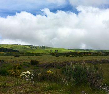 Aussicht von und über die Hochebene Paul das Serra auf Madeira, Portugal