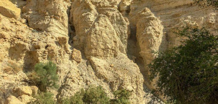 Felsen in der Oase En Gedi in der Negev-Wüste in Israel