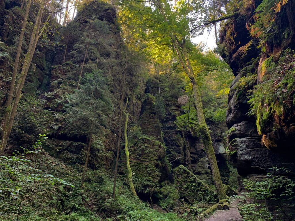 Uttewalder Grund am Malerweg in der Sächsischen Schweiz