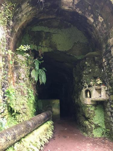 Madeira-Levada-das-25-Fontes-1