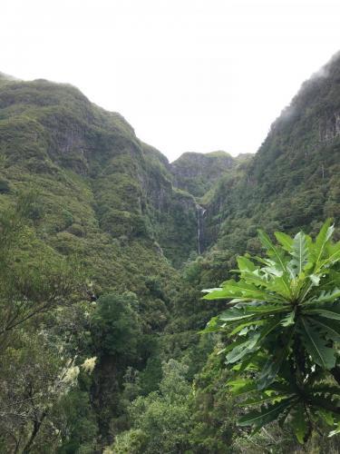 Madeira-Levada-das-25-Fontes-2
