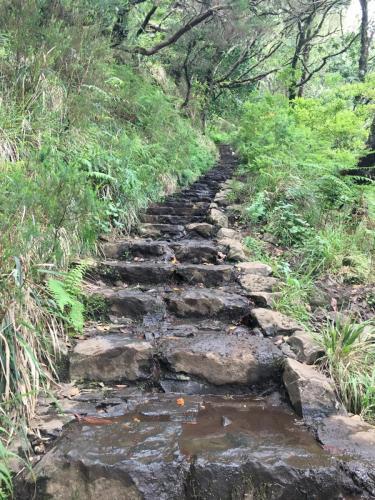 Madeira-Levada-das-25-Fontes-7