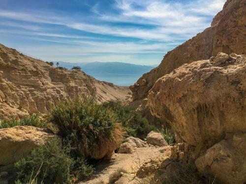 Wanderung durch die Oase En Gedi in der Negev-Wüste in Israel