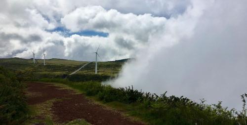 Nebel zieht auf: Und schon sieht man die Windräder auf der Hochebene Paul da Serra nicht mehr.